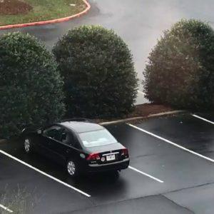 Car Magnets!